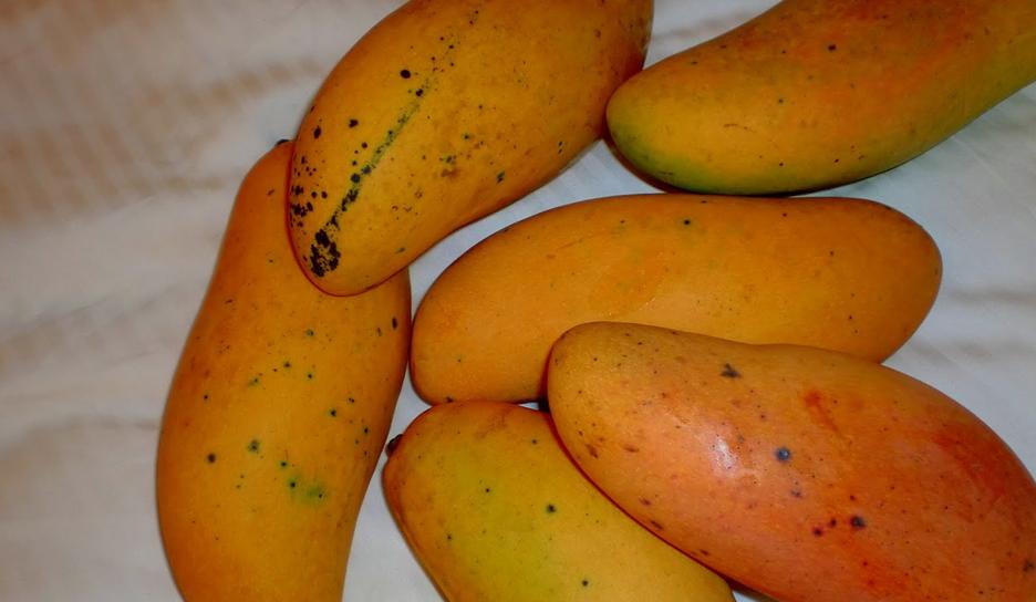 Un fruit, pour combattre le cancer