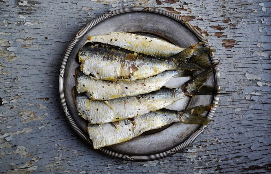 Des poissons injustement négligés